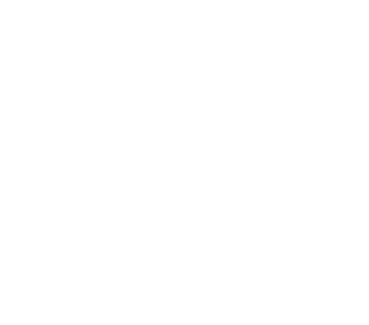 The Brewery Experience
